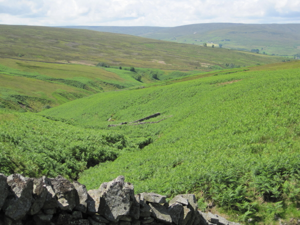 Smiddy Cleugh and Sheepfold
