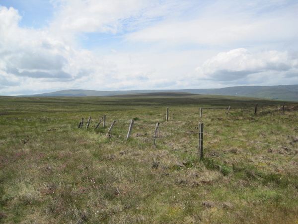 Fencing near Horseman Cleugh