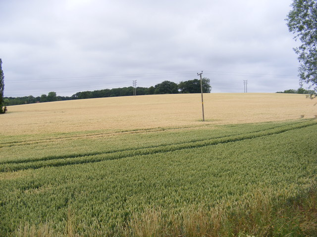 Fields off the new bridge on the B1116 Woodbridge Road