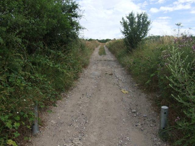 Byway leading to Lodge farm, near Cobham