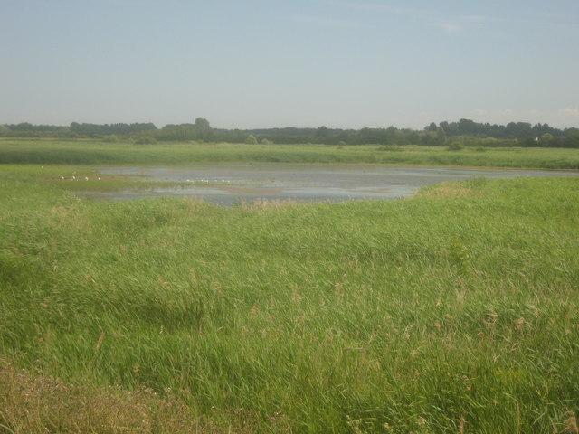 View of a Stodmarsh lake