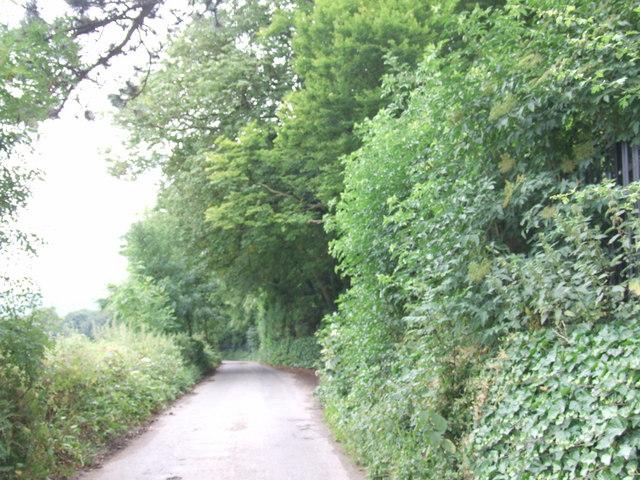 Ladd's Lane, Holborough