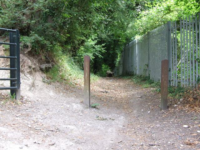 Pilgrims Way, Birling Hill