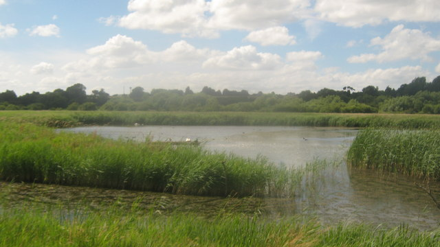 View from David Feast Hide