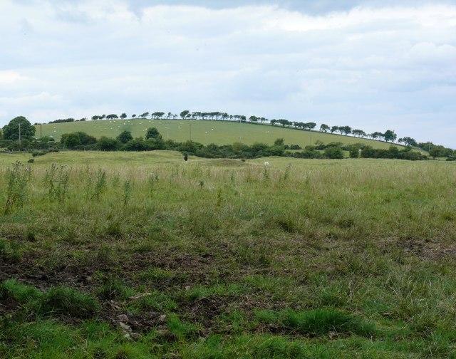 Newtonhill