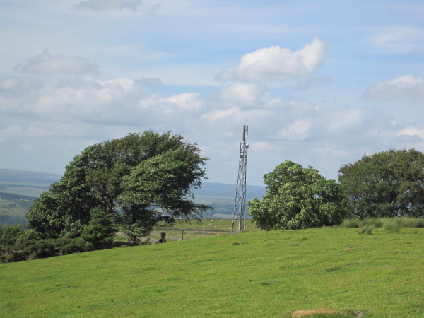 Mobile Phone Mast at Quarry House