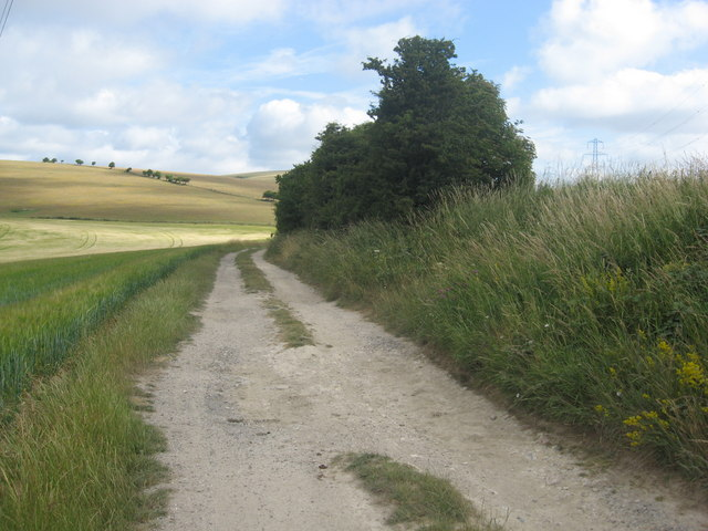 Downland farm track in Summers Deane