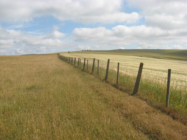 Downland summit, boundary fence