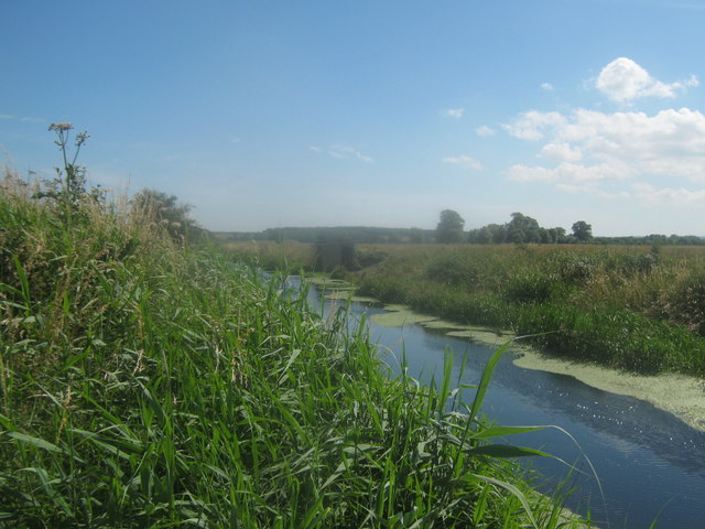 The River Little Stour looking upstream