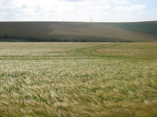 Arable crops in downland, the view East from Tenant Hill