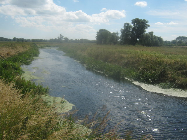 River Little Stour looking upstream (2)