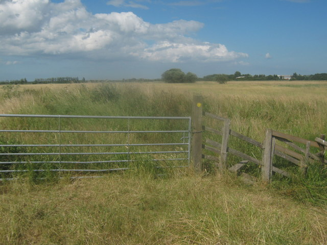 Footpath junction near the River Little Stour