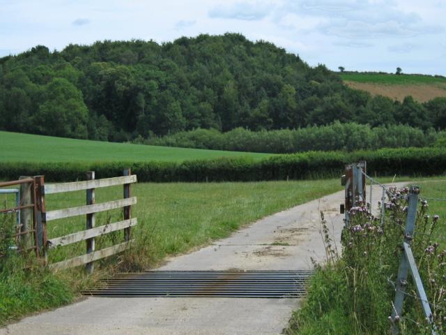Farm entrance, Knott Oak, near Kingstone