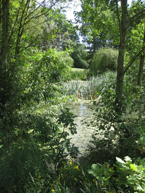Upper pond area, ICBP