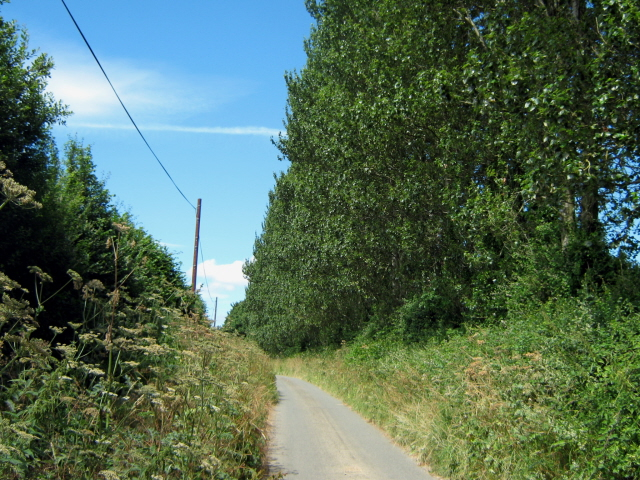 Narrow lane west of Allowenshay
