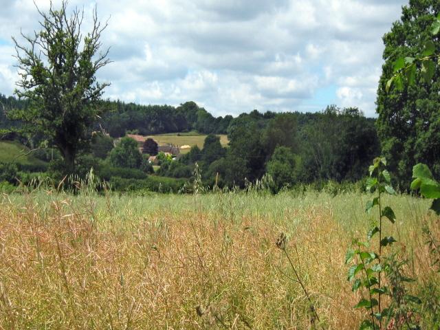 Fields near Mill Farm, Dinnington