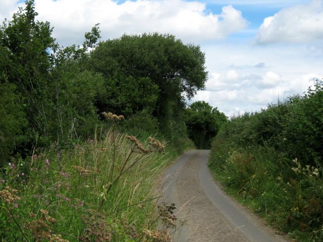 Lane near Mill Farm, Dinnington