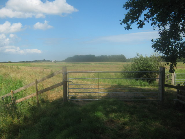 Gate beside the River Little Stour