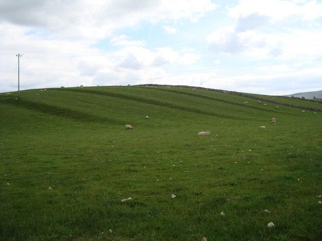 Strip lynchets near Friar Bottom farm