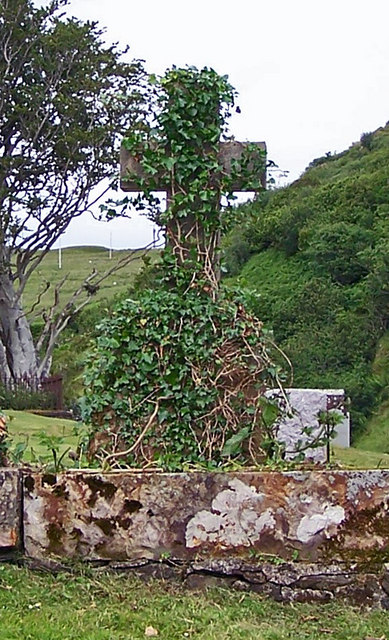 Ivy covered cross