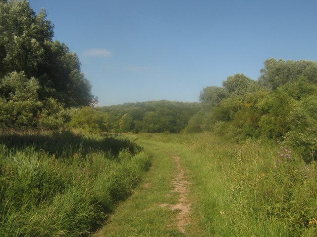 Footpath to Wenderton Hoath