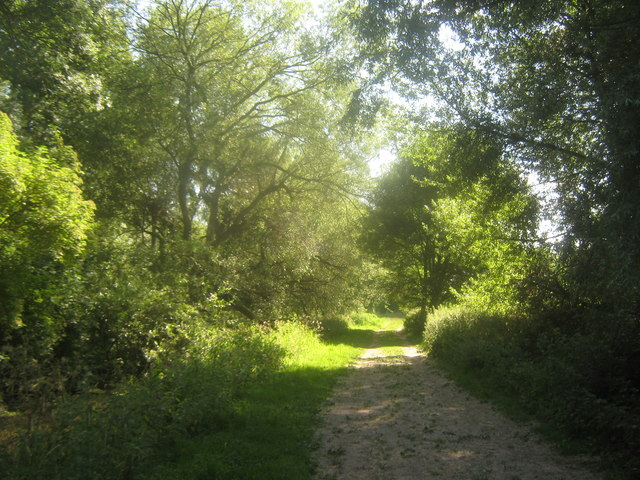 Footpath to Wickhambreaux