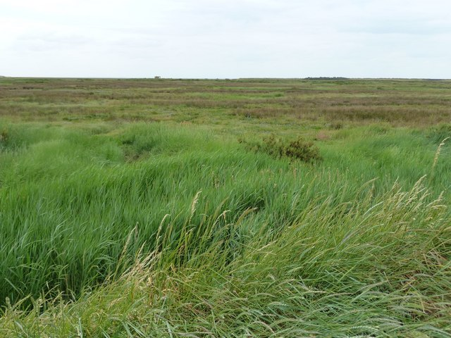 Titchwell salt marsh, from the RSPB Reserve