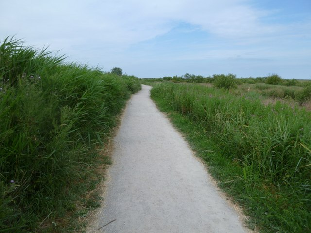 Titchwell RSPB reserve - path through the marshes