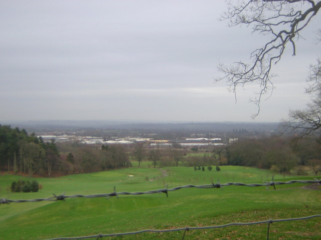 View towards Hedge End from Telegraph Woods