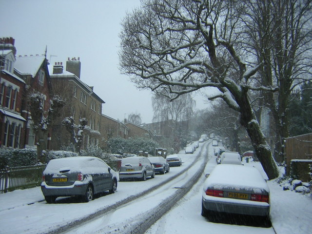 Fox Hill in the snow