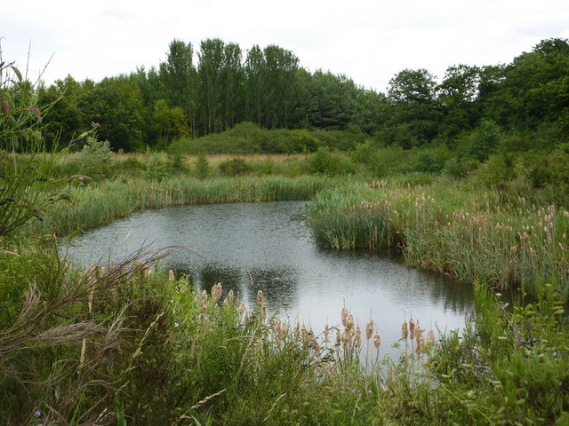 Little lake by footpath