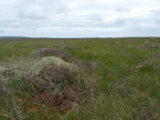 View across moorland from Cnoc na h-Imriche
