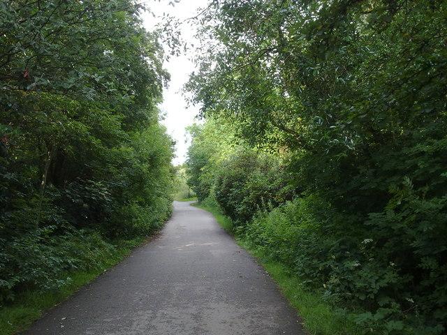 A path in Heaton Park