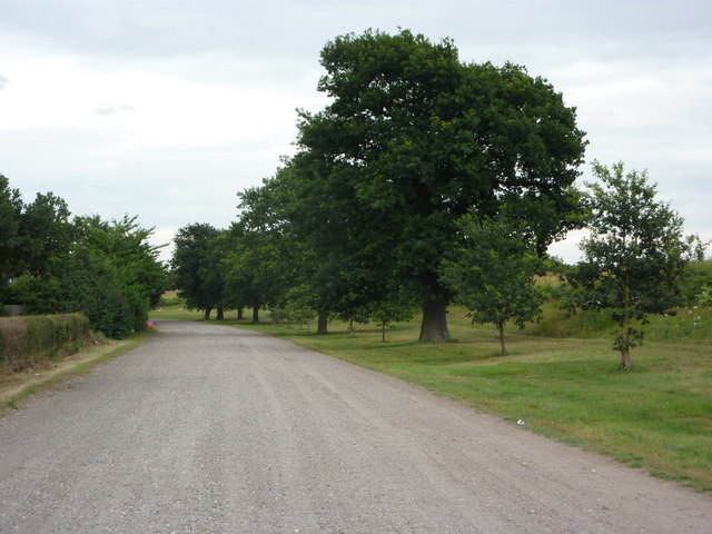 Byway towards wildfowl reserve and Sutton Grange