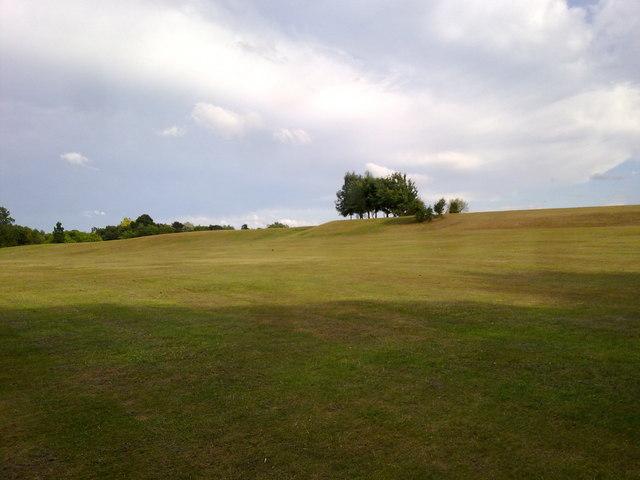 Mown grass area in Heaton Park