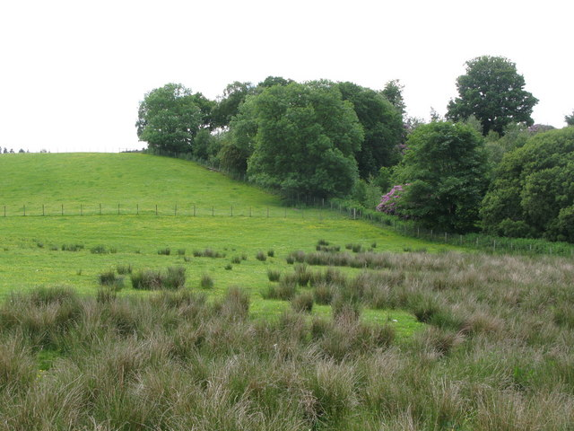 Pastures and woodland near Blenkinsop Castle