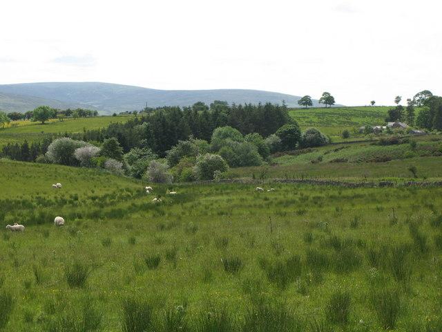 Glen Cune near Peat Gate