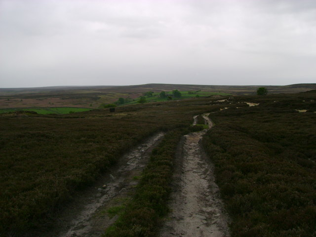 Track  over  Moorland