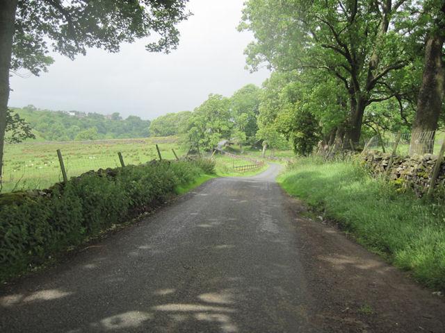Lane near Low Force