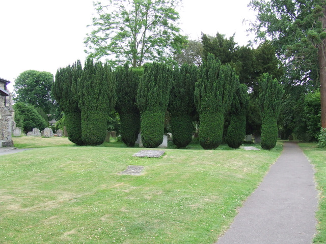 Graveyard at St Mary The Great Church