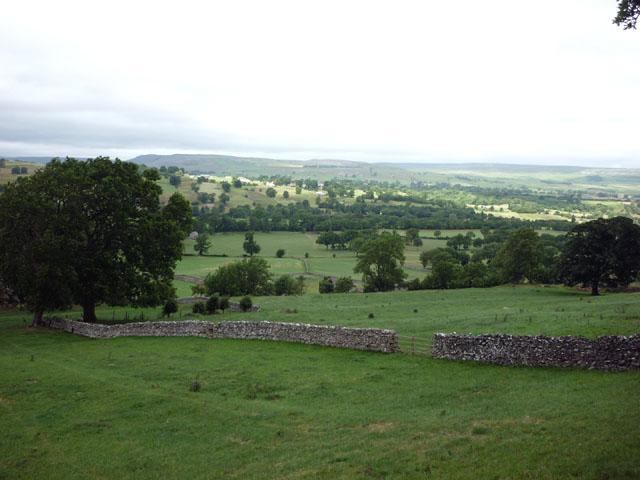 Pastures near West Burton