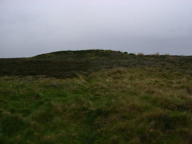 Tumuli  on  Lealholm  Moor
