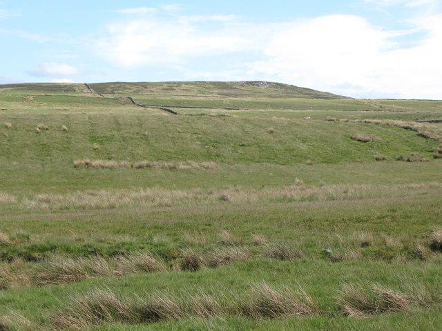 Ashholme Common below Wallace's Crags