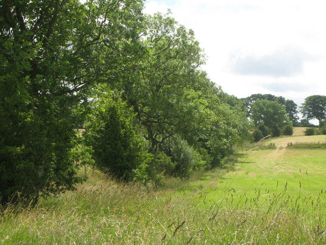 Pastures and woodland west of Blossom Hill