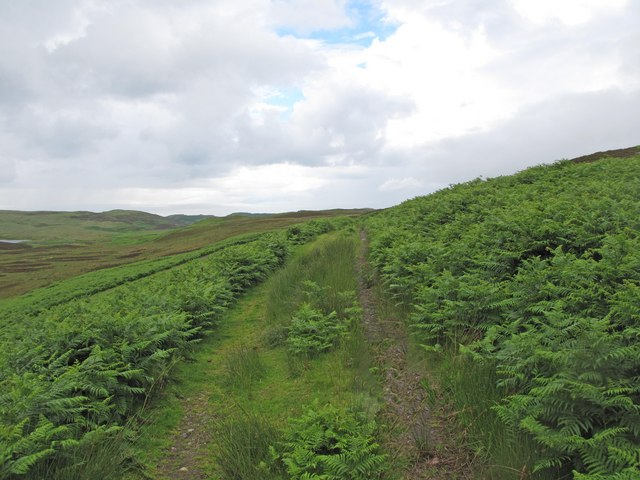 Track from the peat banks