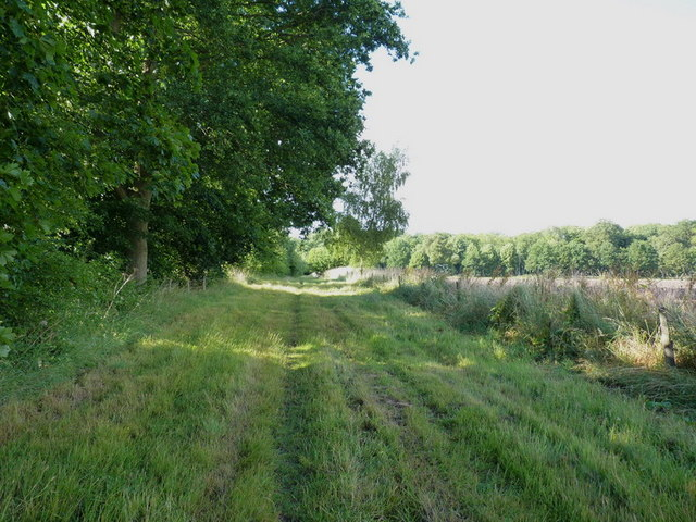 North along the bridleway towards Bickley's Rough