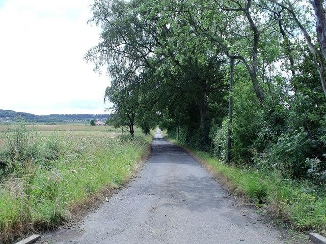 Netherinch Road