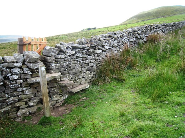 Boundary wall near Greenpot Hole