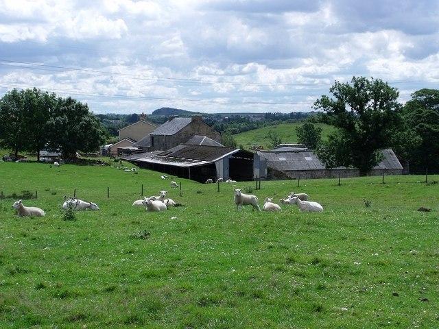 Lochmill Farm