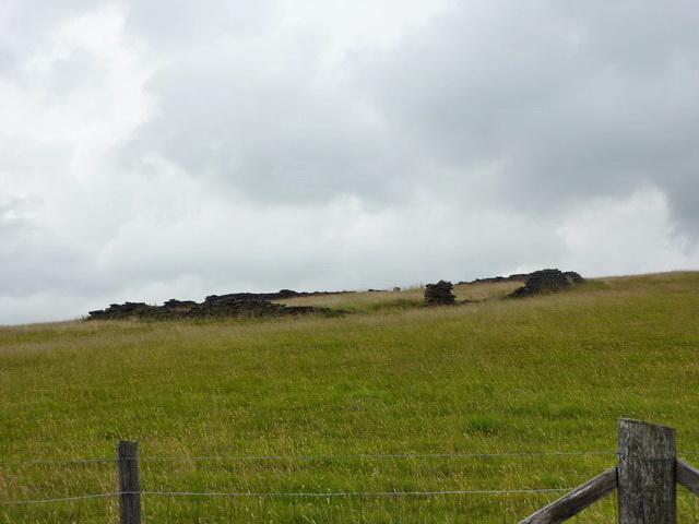 Circular field east of Cow Toot Farm
